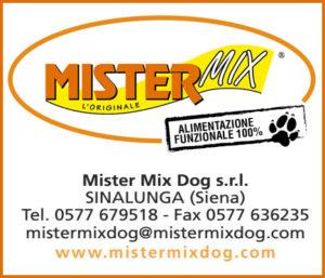 Mister Mix