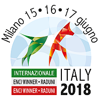 Enci Winner 2018